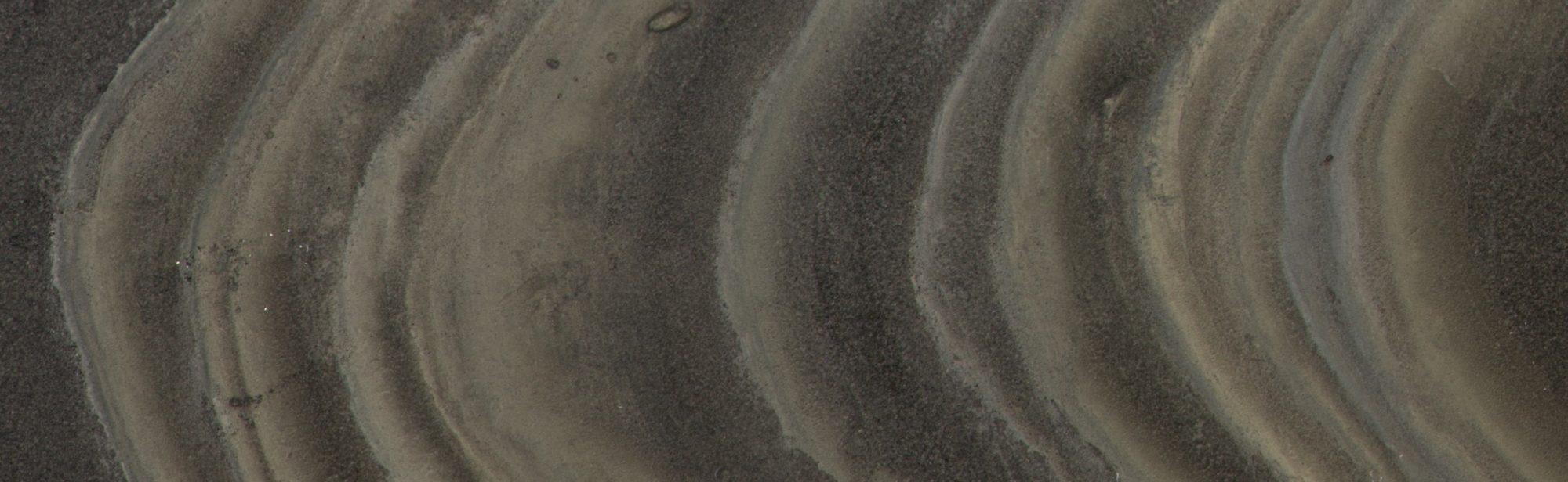 Sedimentary Records of Environmental Change Lab